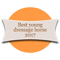Best Young Dressage